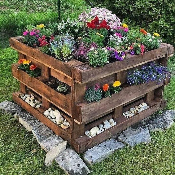 kvety v záhradnej nádobe