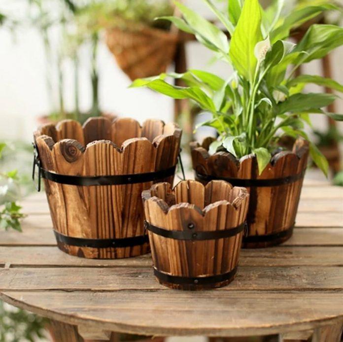 rastliny a drevené kvetináče