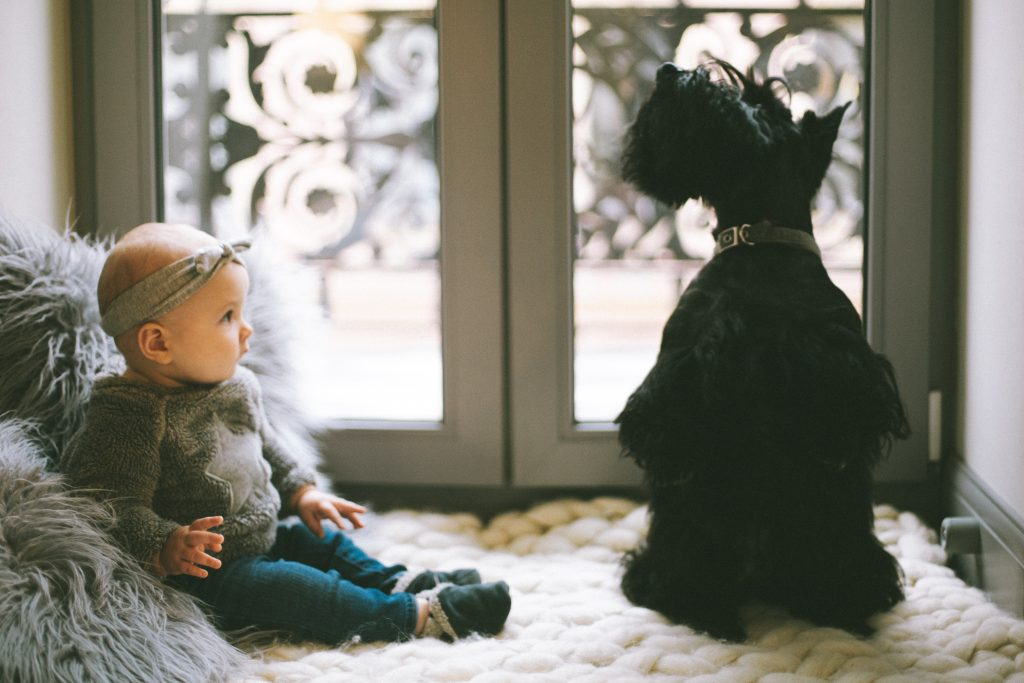 dieťa a pes byte so smart čističkou vzduchu