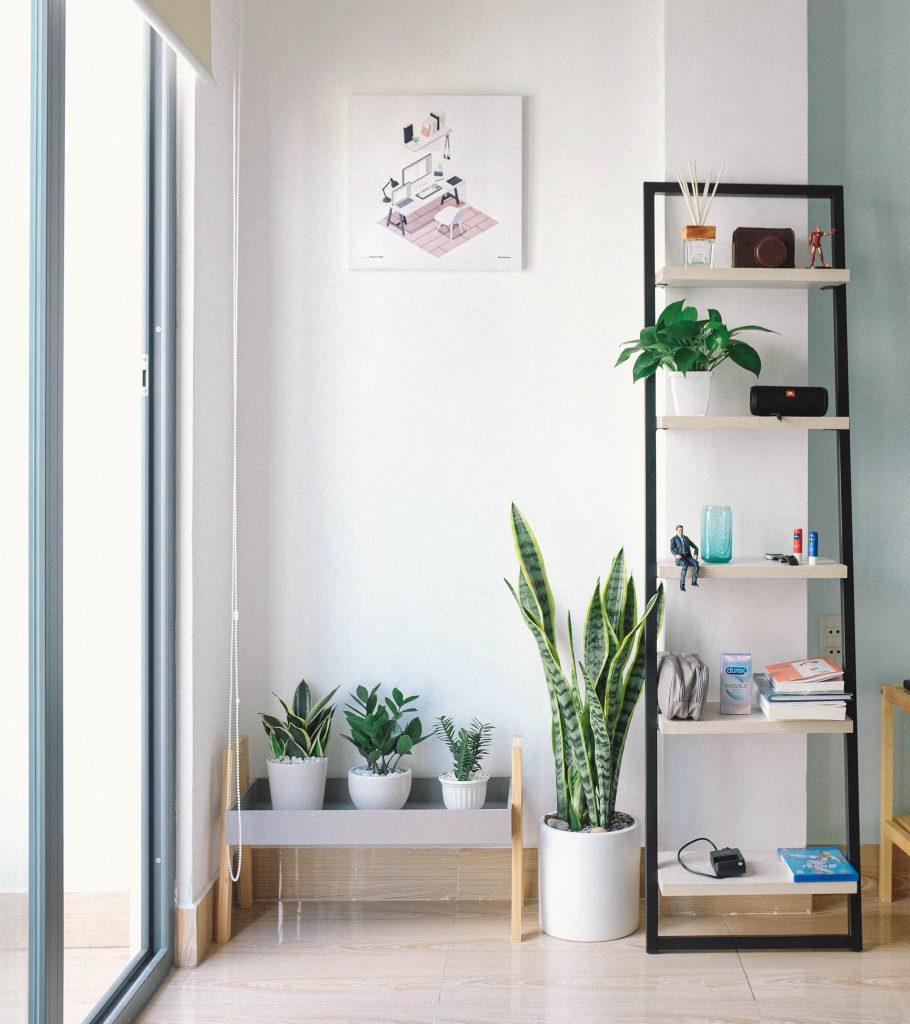 biela v interiéri a zelené rastliny kvitnúce listom