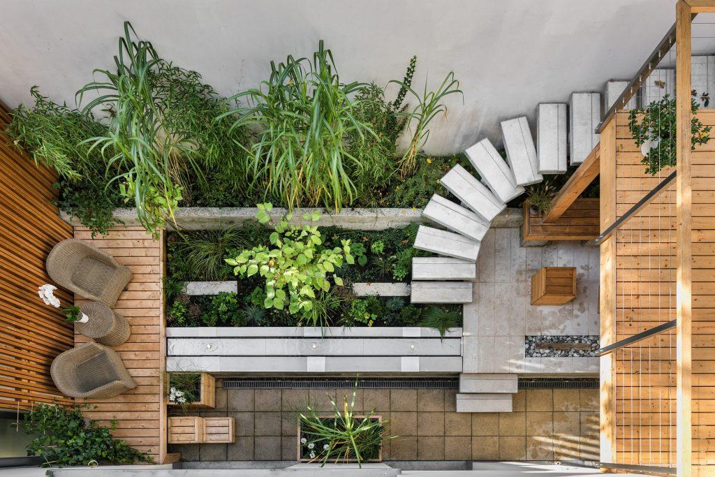 krásna zdravá záhrada so schodiskom a zeleňou