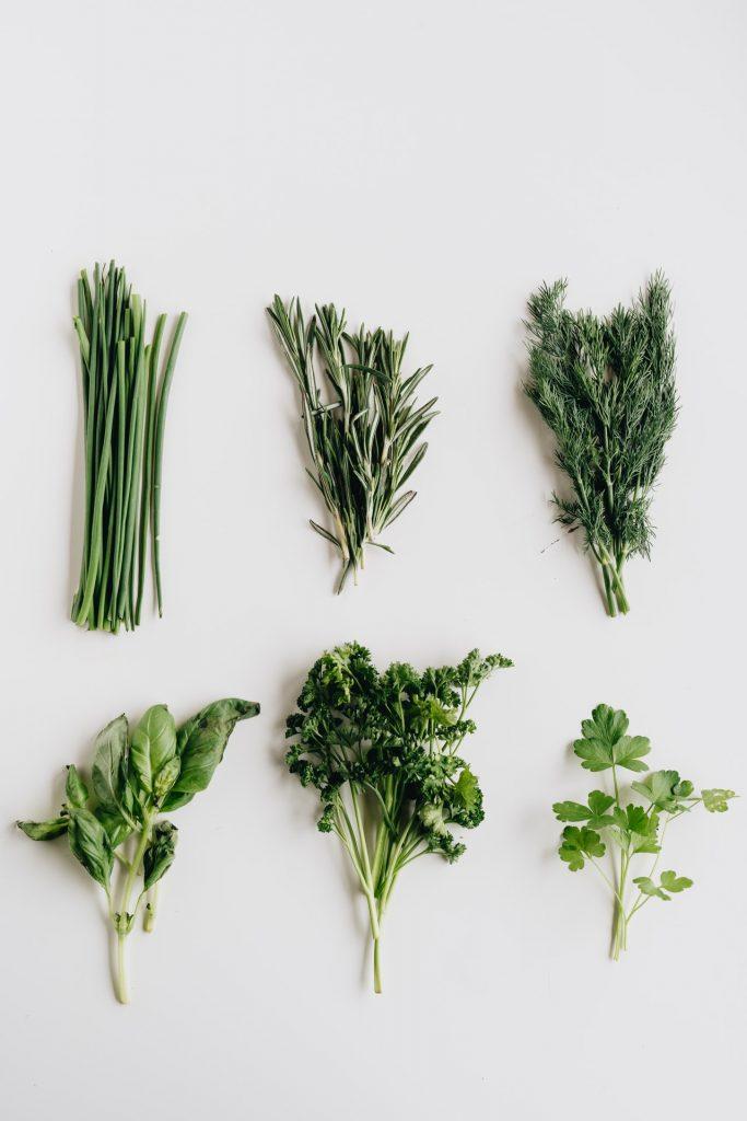 šesť druhov liečivých byliniek pestovaných v kuchyni aj počas zimy