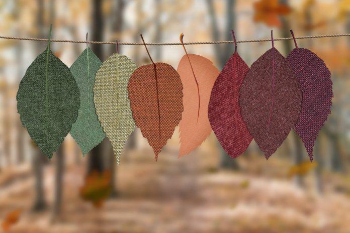 krásne jesenné listy vyvesené na špagátiku v lese