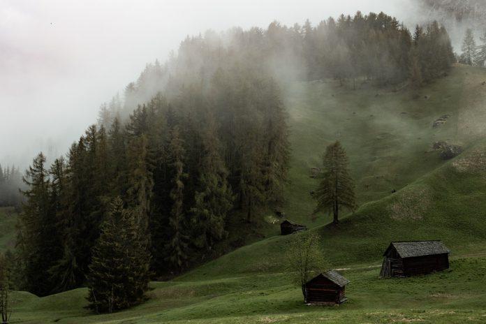krásna zelená príroda počas hmlistého rána s drevenými objektami