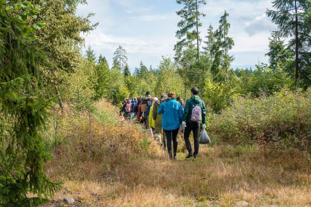 skupina dobrovoľníkov vstupujúcich do lesa za účelom upratovania a sadenia stromčekov