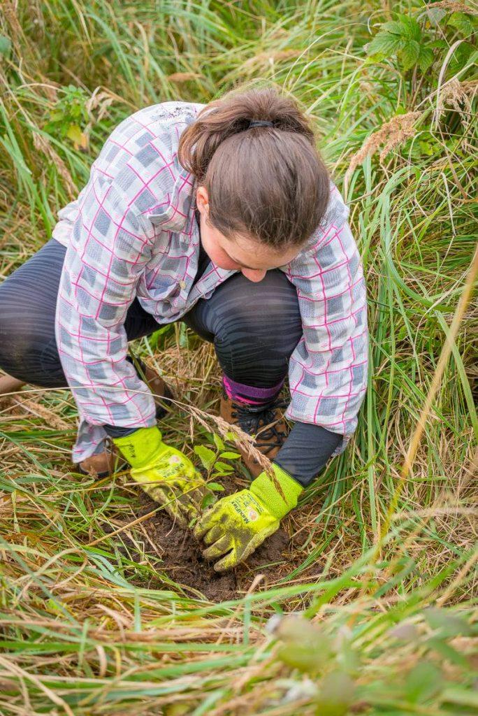 mladá žena vysádzajúca sadenice stromčekov spolu s OZ Pure Slovakia