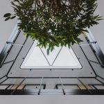 prvé poschodie administratívnej budovy s pohľadom na presklený strop