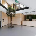 vstupná hala spolu s recepciou v administratívnej budove s detailom na živý strom symbolizujúci rast firmy