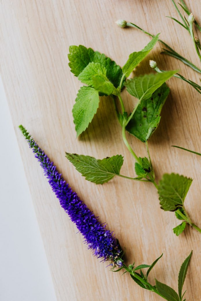 lístky a kvet mýty na drevenom stole