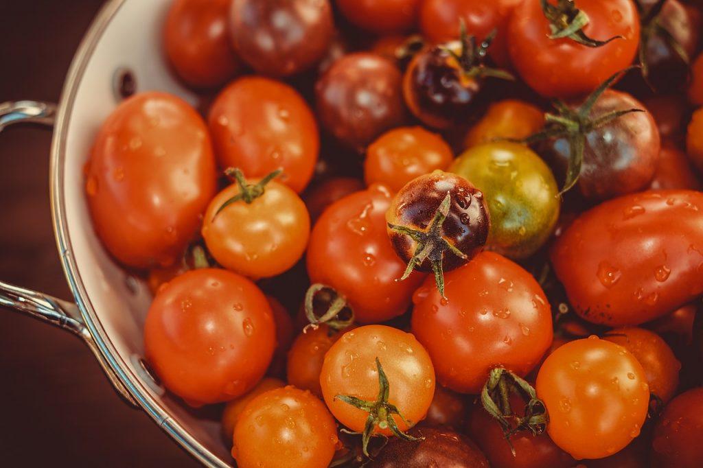 zdravé domáce paradajky vypestované doma na balkóne počas letných mesiacov