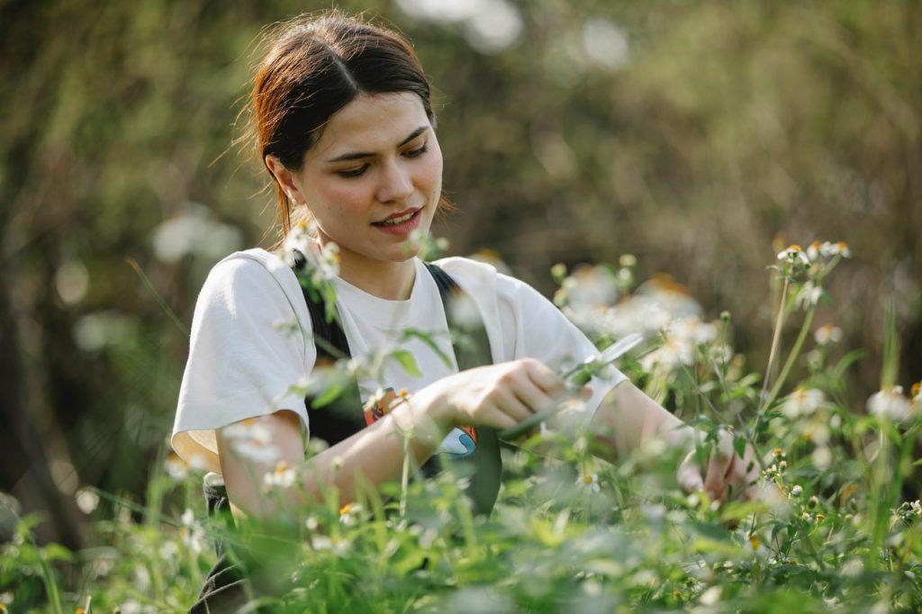 mladá žena pracuje vo svojej záhrade a strihá bylinky