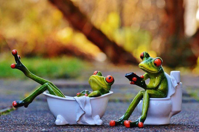ilustračný obrázok s dvoma žabkami v prírode