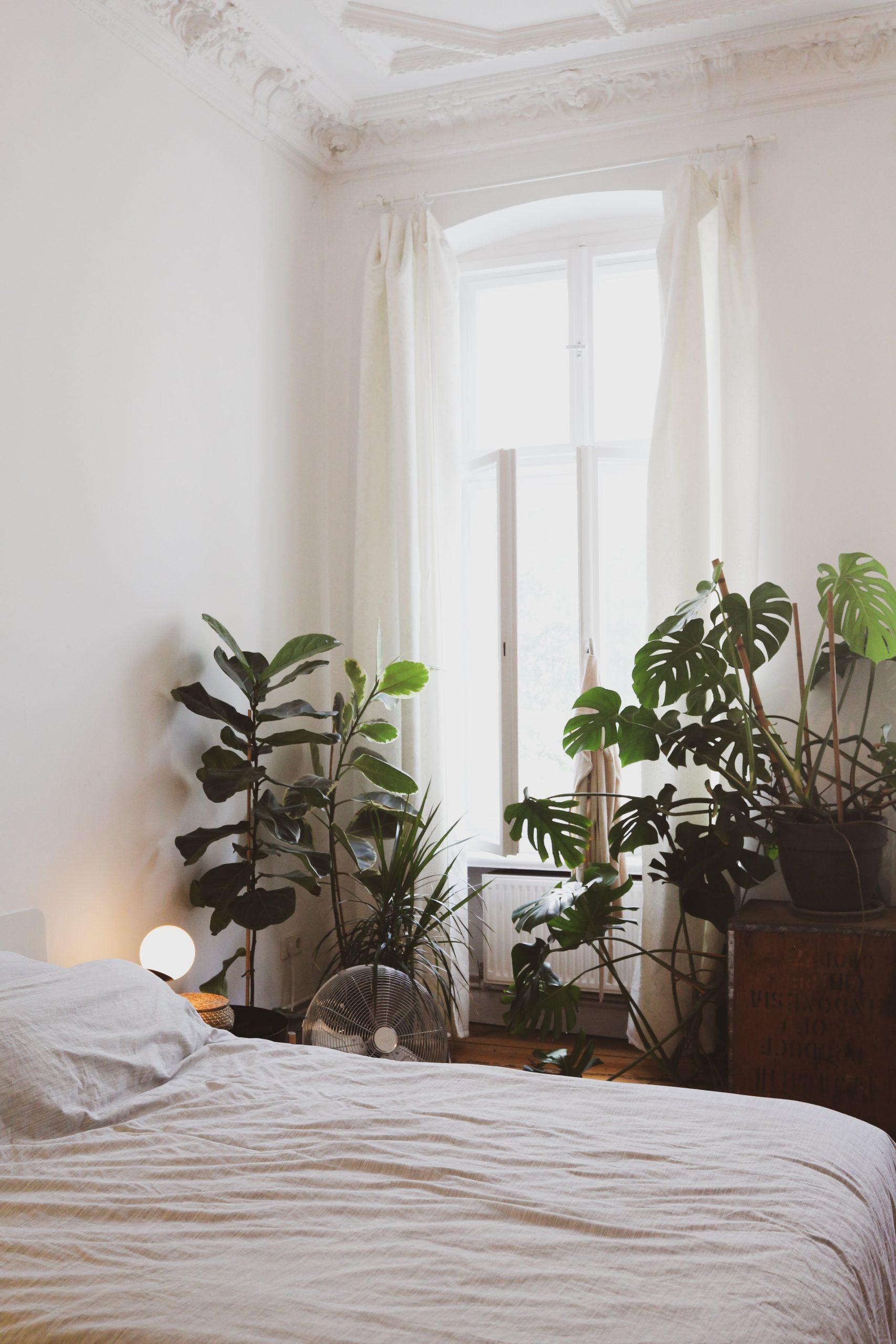 Spálňa v štýle urban jungle