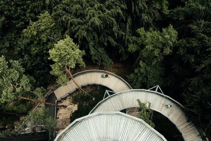 Rozhľadňa medzi stromamii